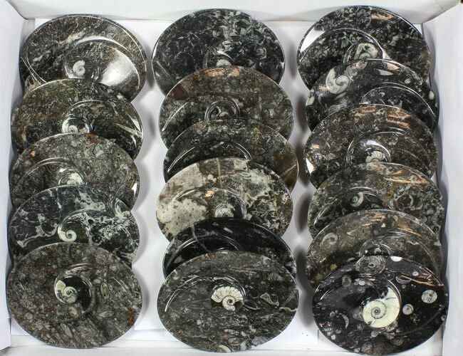 "Wholesale Lot:  5"" Fossil Orthoceras Stoneware Dishes - 26 Pieces"