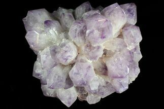 "Buy 14"" Wide Amethyst Crystal Cluster - Spectacular Display Piece - #78154"