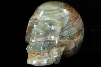 "Buy 5.8"" Carved, Blue Calcite Skull - Argentina - #78634"