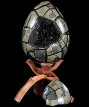 "9.8"" Septarian ""Dragon Egg"" Geode - Removable Section For Sale, #78539"