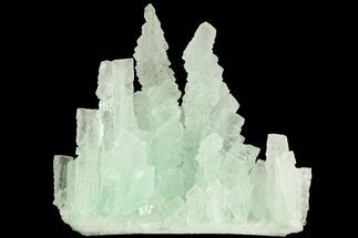 "Buy 3.9"" Mint Green Halite With Atacamite - Rudna Mine, Poland - #79273"