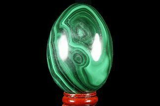 "Bargain, 3"" Polished Malachite Egg - Congo For Sale, #78929"