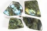 Wholesale Lot: 23 Lbs Free-Standing Polished Labradorite - 15 Pieces - #78029-1