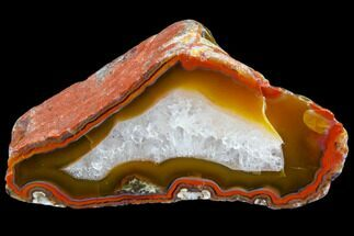 "Buy 3.2"" Beautiful Condor Agate From Argentina - Cut/Polished Face - #79534"