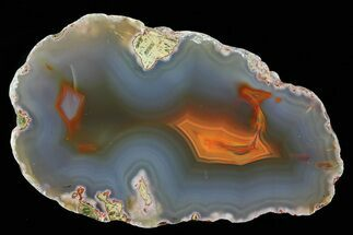 "5.0"" Beautiful Condor Agate From Argentina - Cut/Polished Face For Sale, #79454"