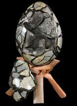 "Buy 9.5"" Septarian ""Dragon Egg"" Geode - Removable Section - #78541"