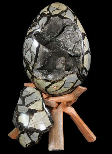 "9.5"" Septarian ""Dragon Egg"" Geode - Removable Section"