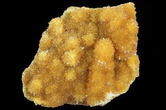 Calcite - Fossils For Sale - #80457