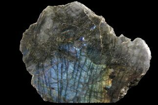 "5.6"" Wide, Single Side Polished Labradorite - Madagascar For Sale, #81392"