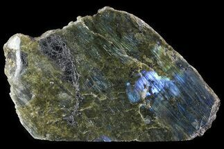 "Buy 9"" Wide, Single Side Polished Labradorite - Madagascar - #81397"