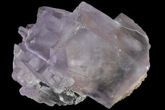 "1.3"" Lustrous Purple Cubic Fluorite Crystals - Morocco  For Sale, #80354"