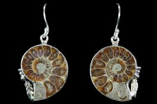 Buy Fossil Ammonite Earrings - Sterling Silver - #82252
