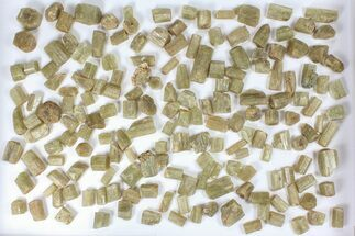 Buy Wholesale Flot:  1440g Apatite Crystals From Morocco - 150+ Pieces - #82342