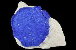 ".7"" Brilliant Blue Azurite Sun - Australia For Sale, #82655"
