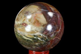"2.7"" Colorful Petrified Wood Sphere - Madagascar For Sale, #82733"