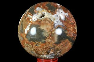"Buy 3.1"" Colorful Petrified Wood Sphere - Madagascar - #82744"