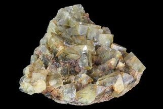 "3.3"" Yellow/Green Cubic Fluorite Crystal Cluster - Morocco For Sale, #82808"