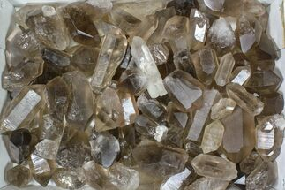"Lot: 22 Lbs Smoky Quartz Crystals (2-4"") - Brazil For Sale, #84233"