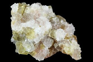"Buy 1.5"" Lustrous Yellow Cubic Fluorite/Quartz Crystal Cluster - Morocco  - #84259"