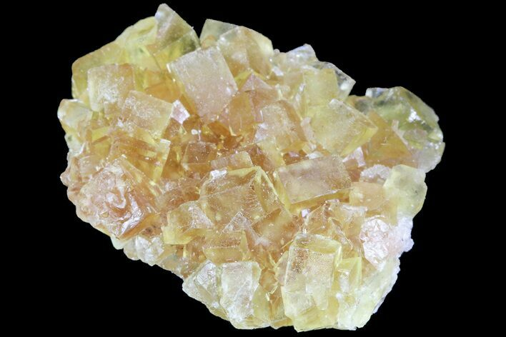 "1.1"" Lustrous Yellow Cubic Fluorite Crystal Cluster - Morocco"