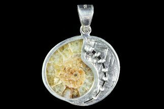 Ammonite Fossil Pendant - Sterling Silver For Sale, #84563