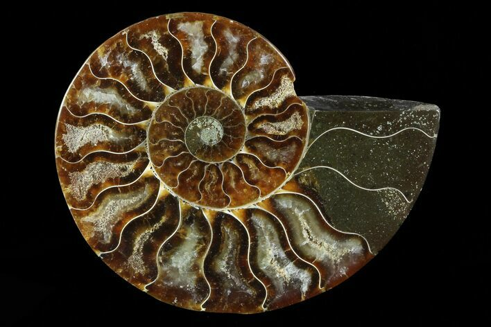 "3.5"" Agatized Ammonite Fossil (Half) - Madagascar"