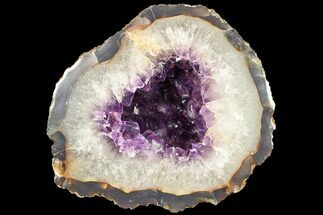 "8.4"" Deep Purple Amethyst Geode - Uruguay For Sale, #87446"