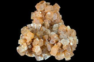 Aragonite - Fossils For Sale - #87762