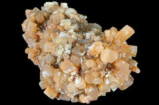 Aragonite - Fossils For Sale - #87765