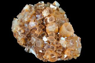 Aragonite - Fossils For Sale - #87777