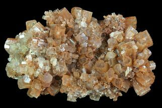 Aragonite - Fossils For Sale - #87795