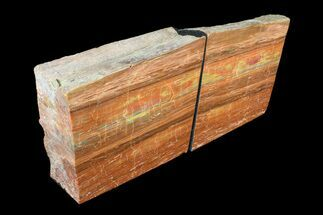 "5.2"" Tall, Arizona Petrified Wood Bookends - Red & Yellow For Sale, #89339"