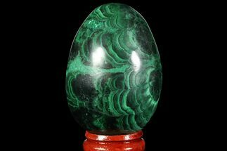 "Buy 2.1"" Polished Malachite Egg - Congo - #89644"