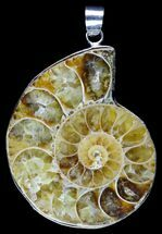 Fossil Ammonite Pendant - 110 Million Years Old For Sale, #89873