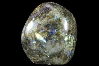 "Buy 3.6"" Flashy Polished Labradorite Free Form - #90670"