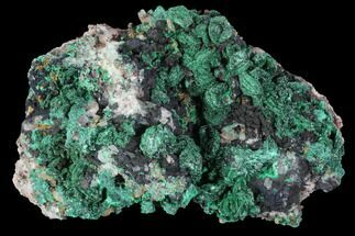 "Buy 3"" Sparkly Malachite on Matrix - Morocco - #90715"