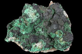 Malachite & Goethite - Fossils For Sale - #90717