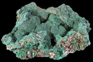 "4.2"" Malachite Crystals on Matrix - Morocco For Sale, #90719"