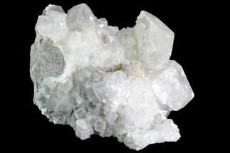 Calcite & Dolomite - Fossils For Sale - #91074