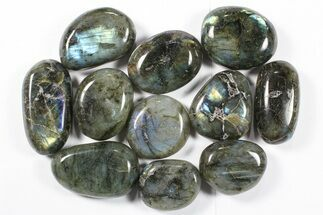 Labradorite - Fossils For Sale - #90531