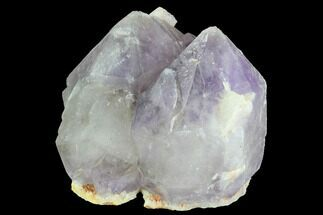Quartz var. Amethyst - Fossils For Sale - #91317