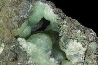 "4.4"" Prehnite Crystal Cluster on Matrix - Connecticut For Sale, #91232"