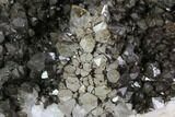 "5.4"" Quartz Cluster with Iron/Manganese Oxide - Diamond Hill, SC - #91238-1"