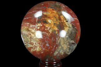 "4.2"" Colorful Petrified Wood Sphere - Madagascar For Sale, #92990"