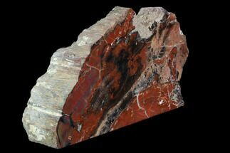 "Buy 10"" Wide, Red Arizona Petrified Wood Section - Free-Standing - #93553"