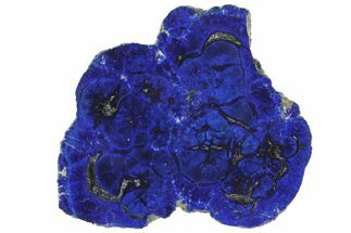 "Buy 1.62"" Vivid Blue, Cut/Polished Azurite Nodule - Siberia - #94564"