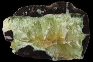 "4.3"" Wide Polished Prehnite Slab - Australia For Sale, #95216"