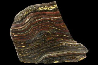 "Buy 8.2"" Polished Tiger Iron Stromatolite - (2.7 Billion Years) - #95905"