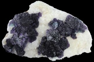 Fluorite & Quartz - Fossils For Sale - #96054