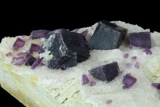 "Buy 4.6"" Dark Purple Cubic Fluorite on Quartz - China - #94315"
